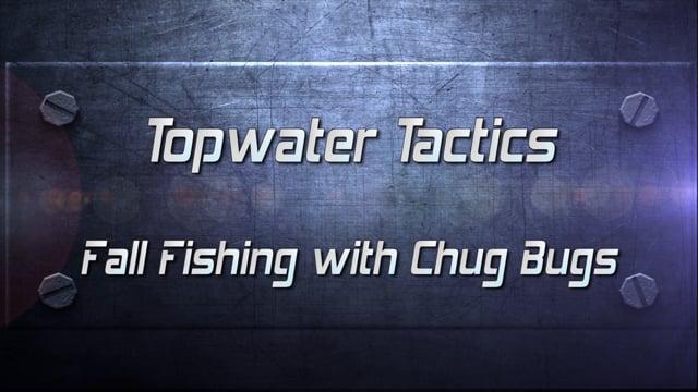 Pro Tip Topwater Chug Bug