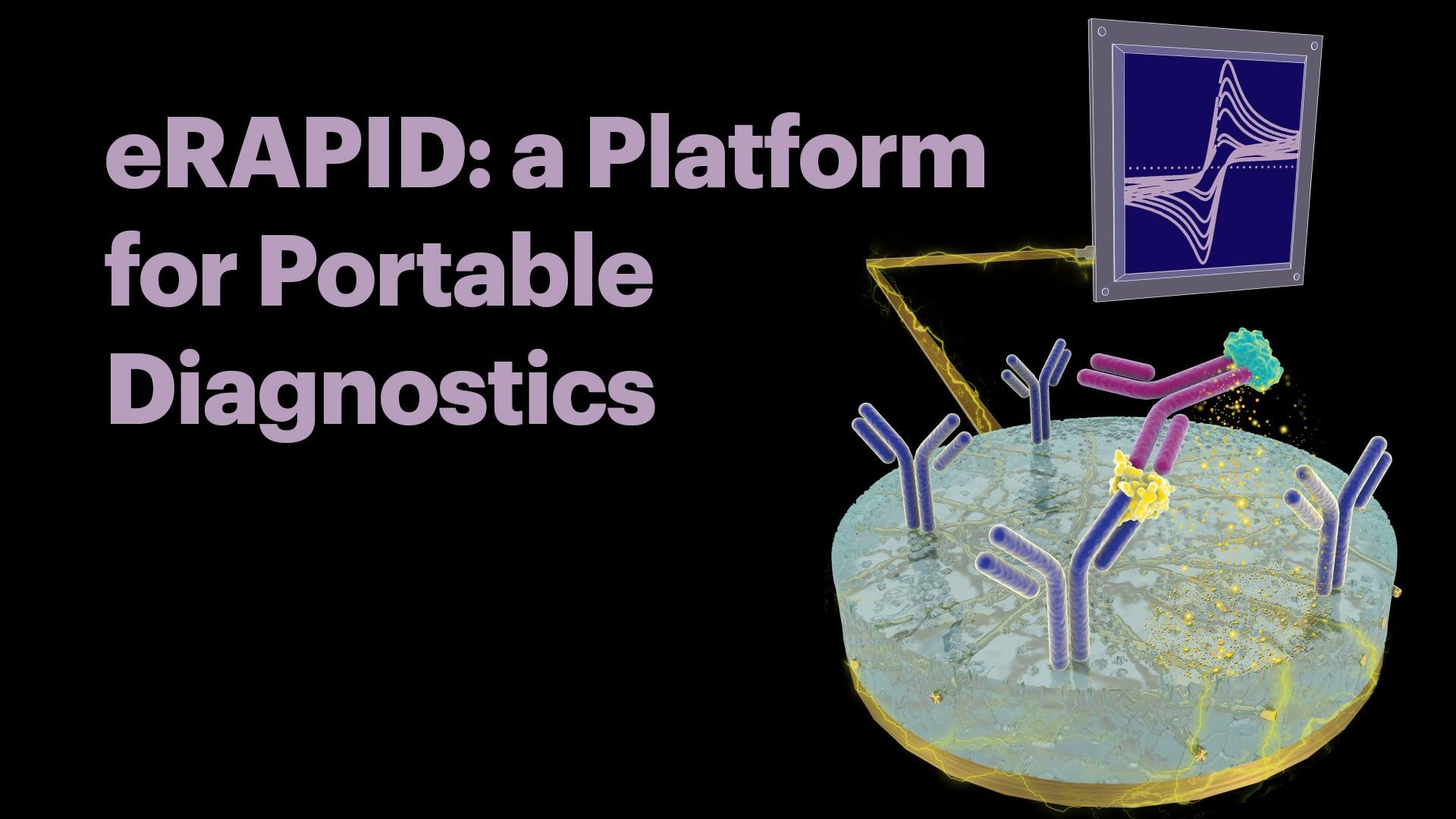 eRAPID: a Platform for Portable Diagnostics