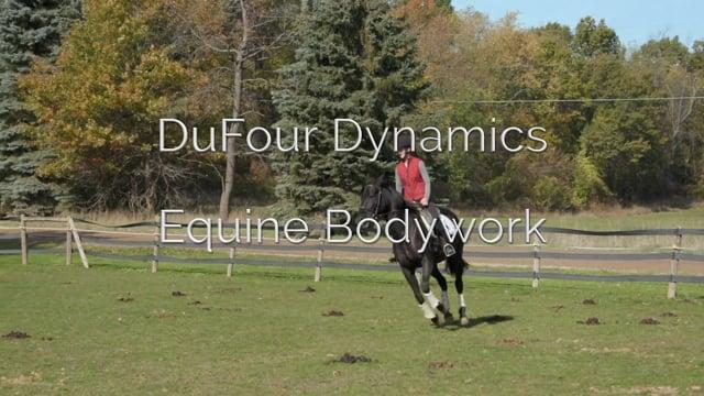 DuFour Dynamics Equine Bodywork