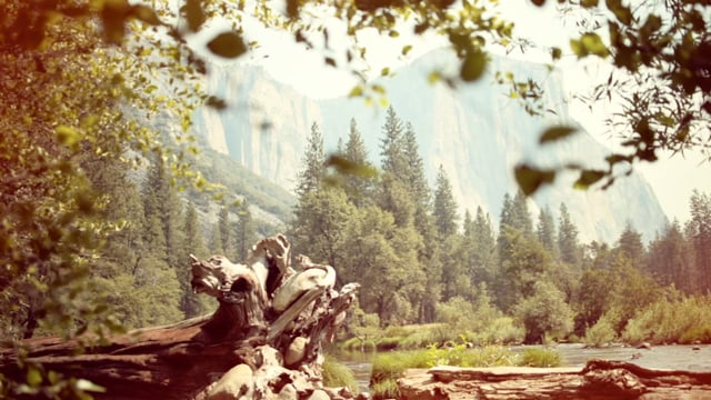 Nick Meek/ Yosemite