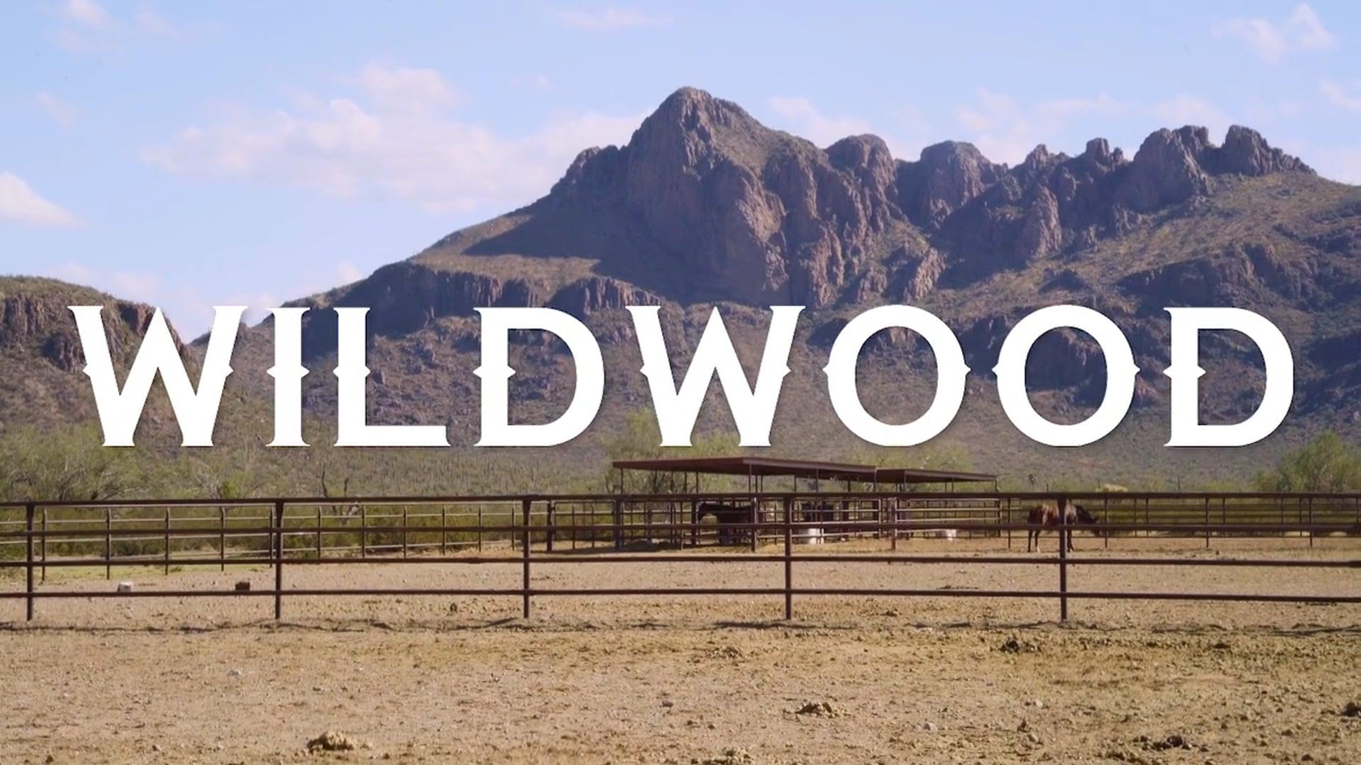TAMGA - Wildwood (Tucson)