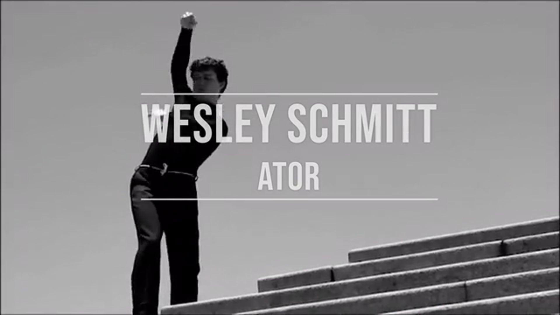 Demo Reel - Wesley Schmitt