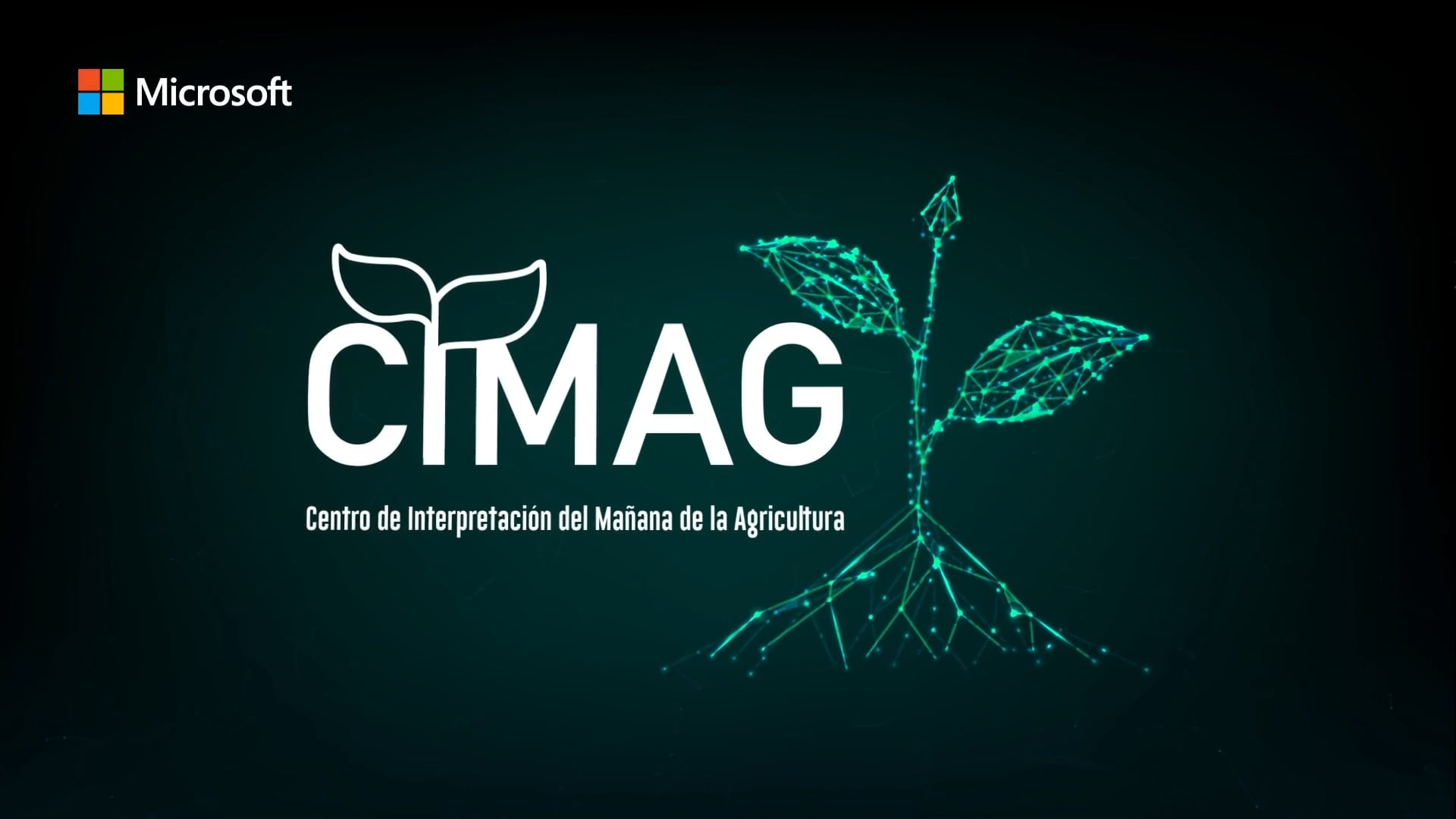 CIMAG, Microsoft - IICA