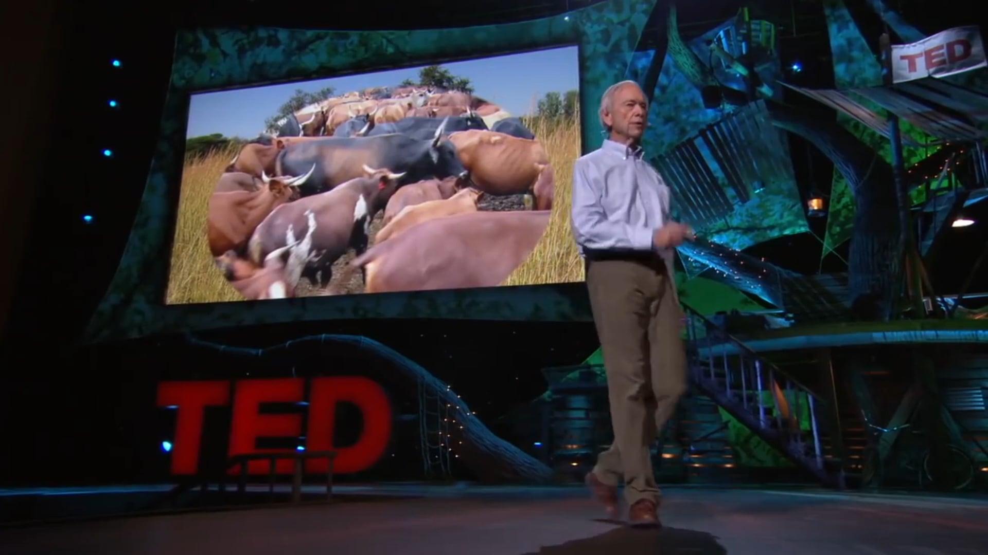 Common Sense Revolution - The Allan Savory Story