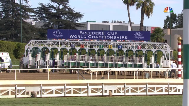 Mitole   2019 Breeders' Cup Sprint G1