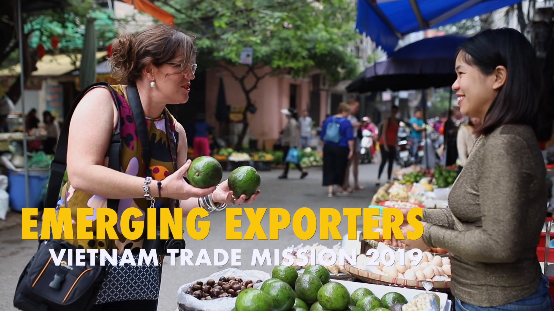 SHELL QGC - Emerging Exporters VIETNAM