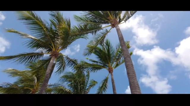 Путешествие по Америке: Майами