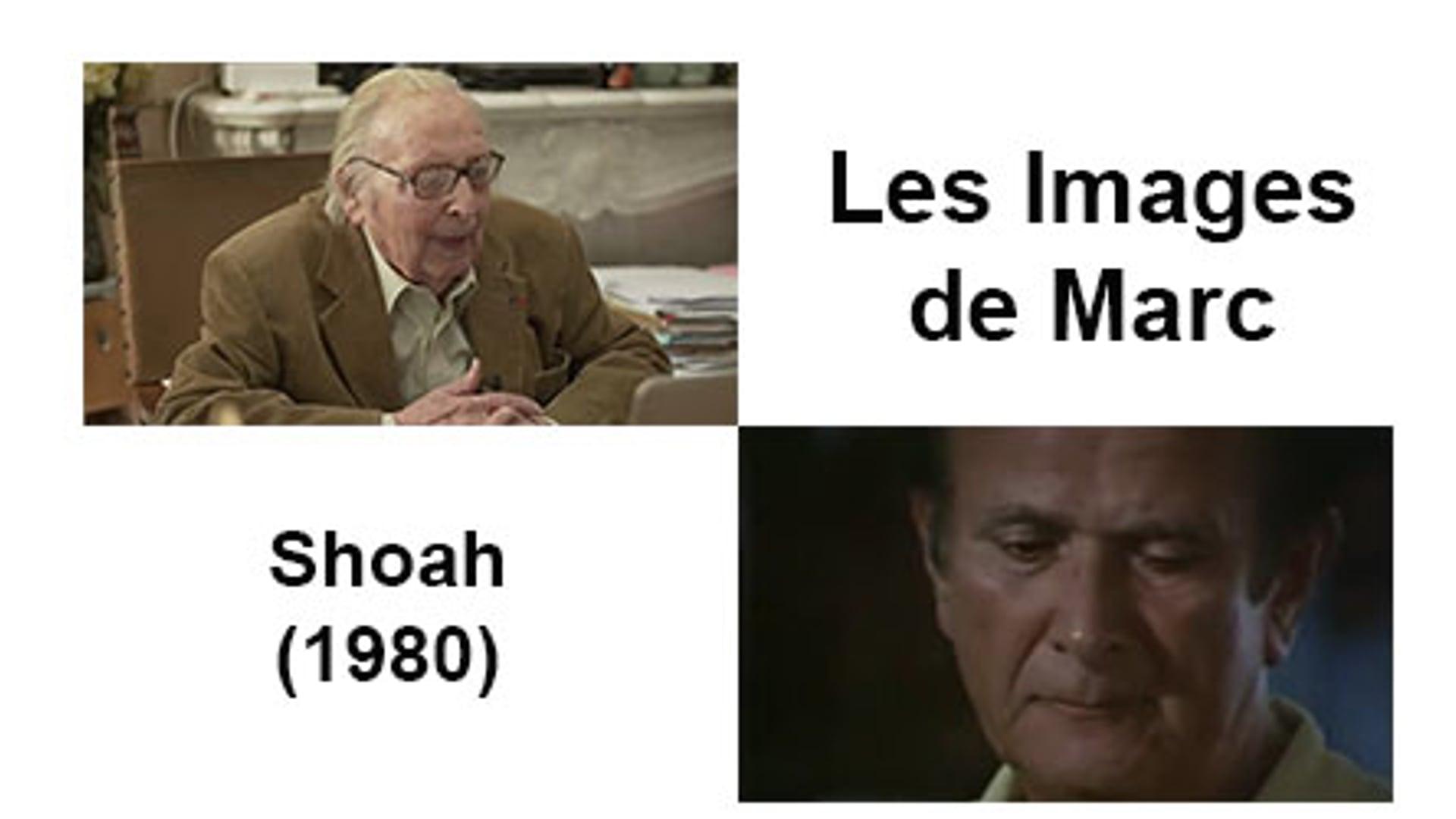 Shoah (1980)