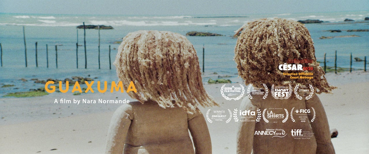 Guaxuma   Short Film of the Day