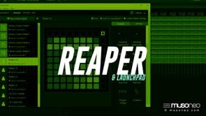 Launchpad jako sterownik DAW dla Reaper
