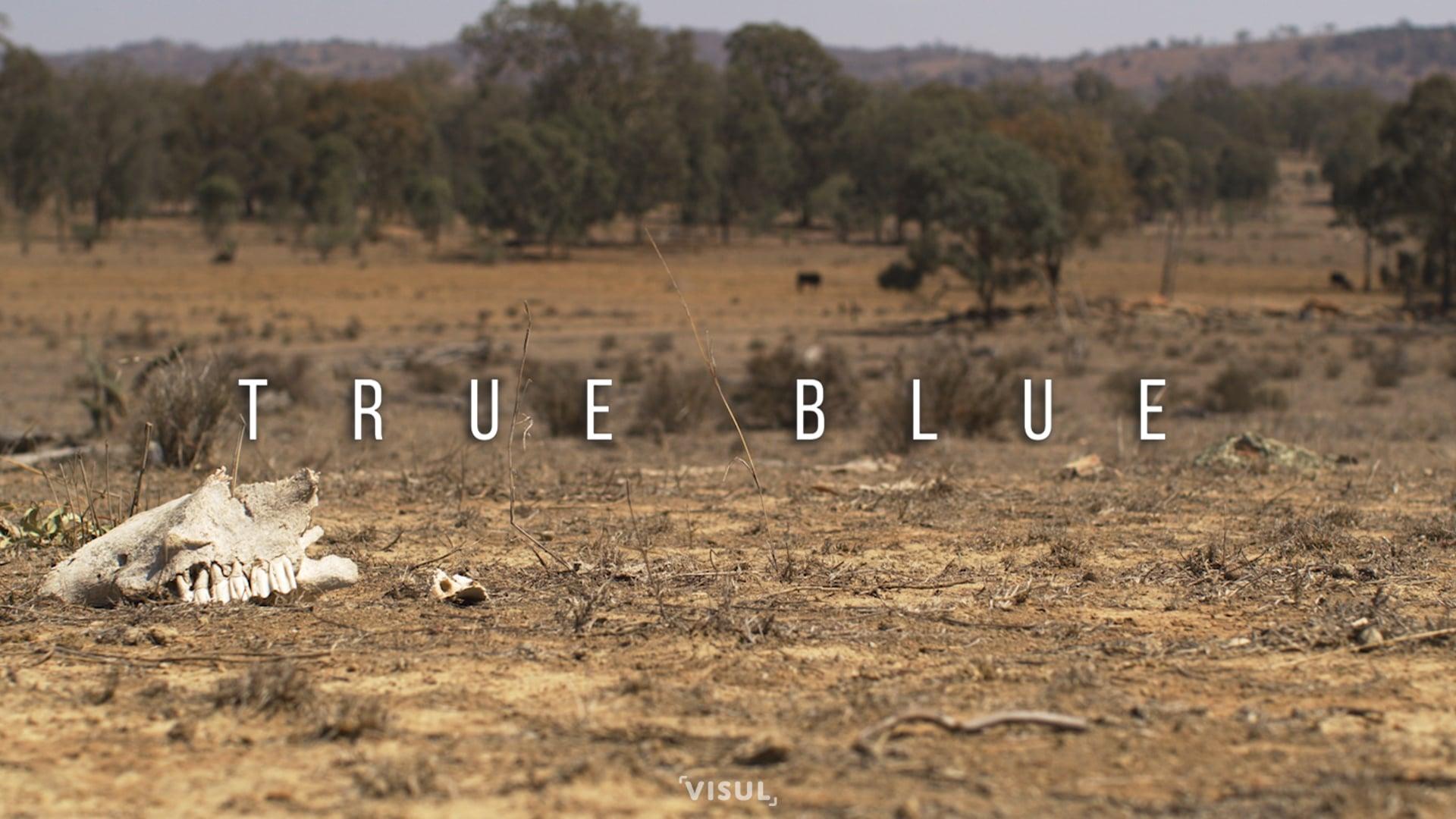 True Blue [2020]
