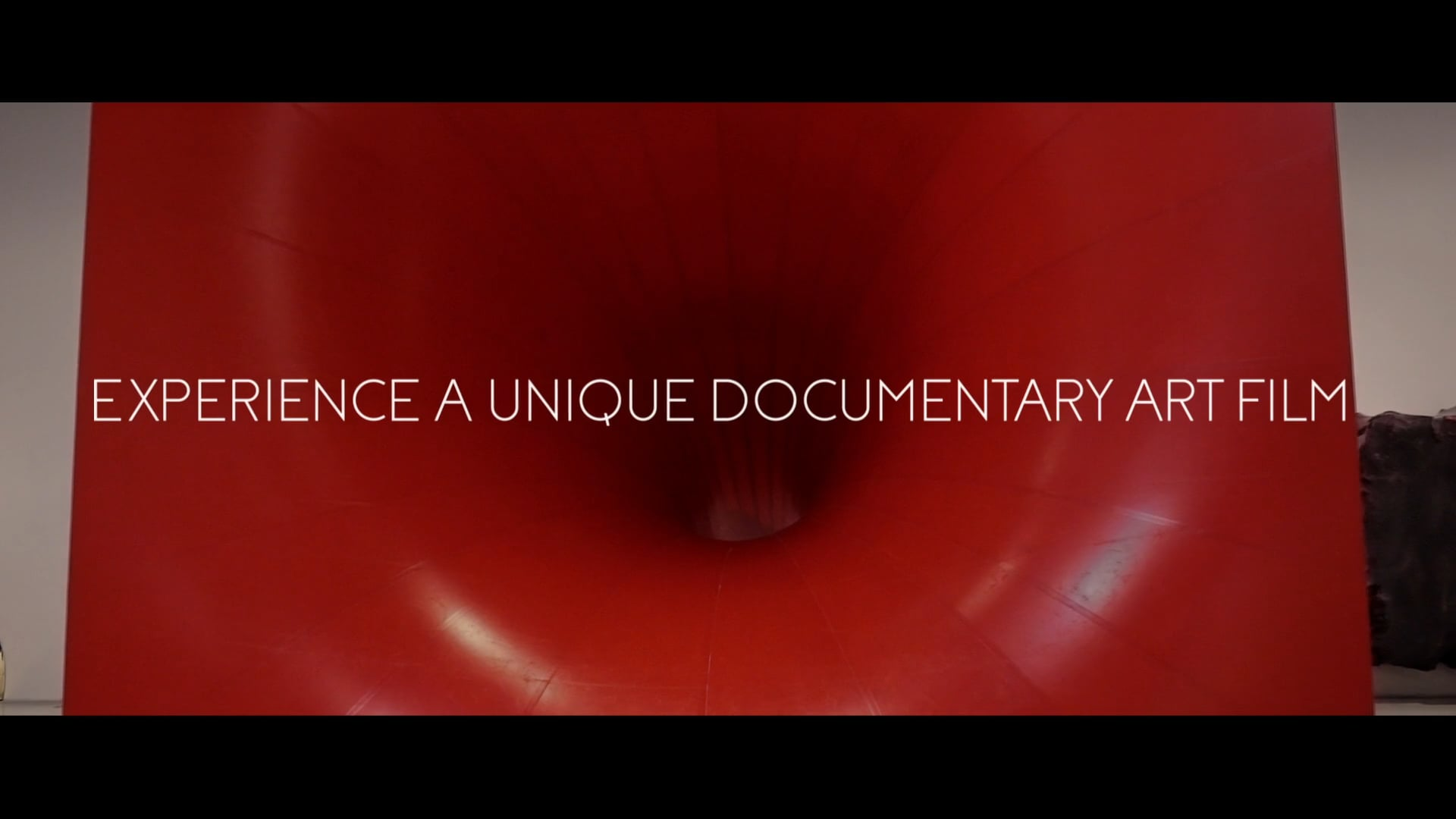 TRAILER Under The Skin - In Conversation with Anish Kapoor