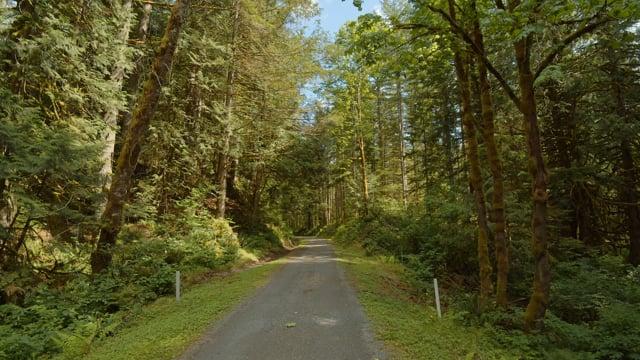 Snoqualmie Forest Walk, Washington State
