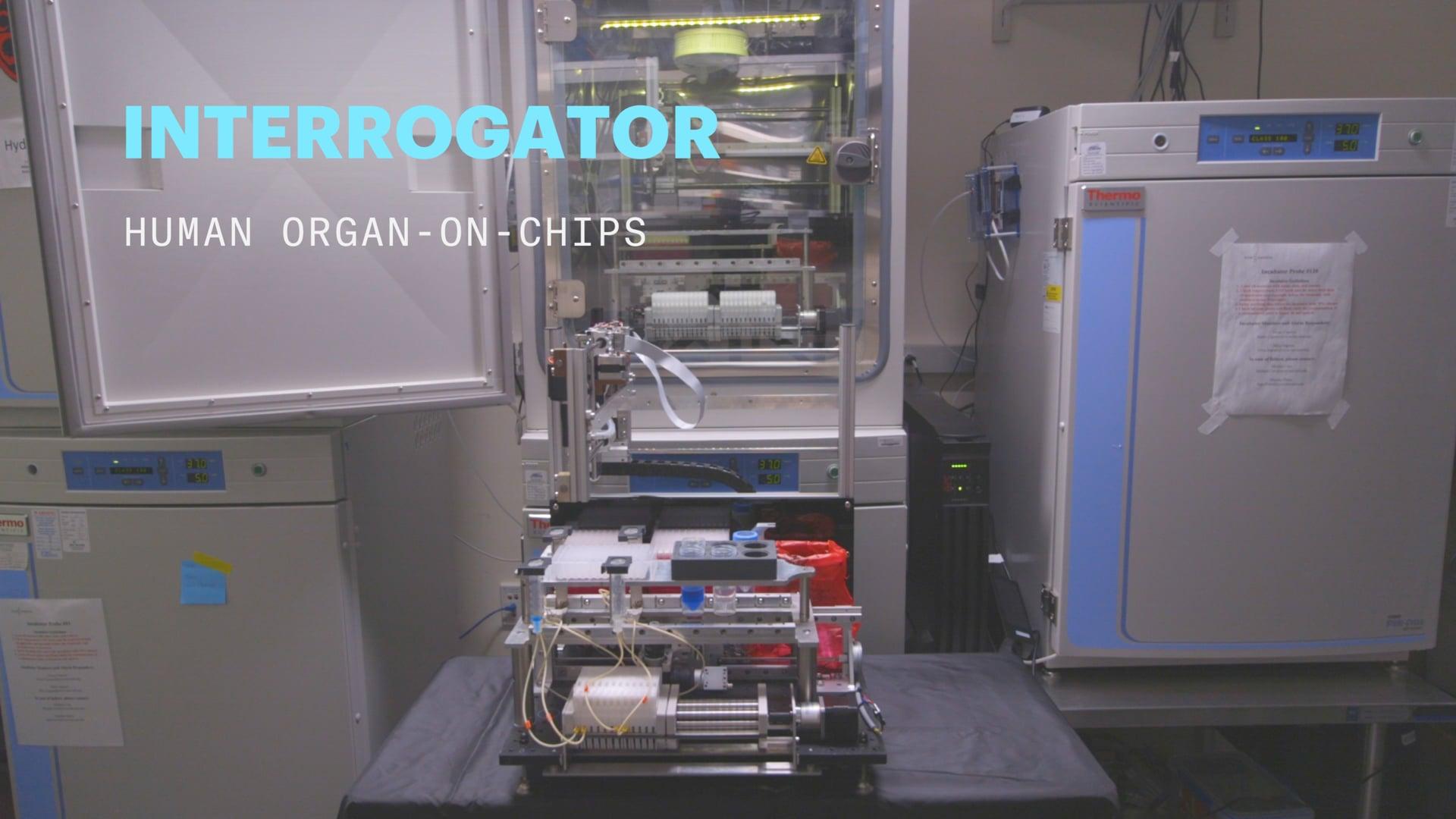 Interrogator: Human Organ-on-Chips
