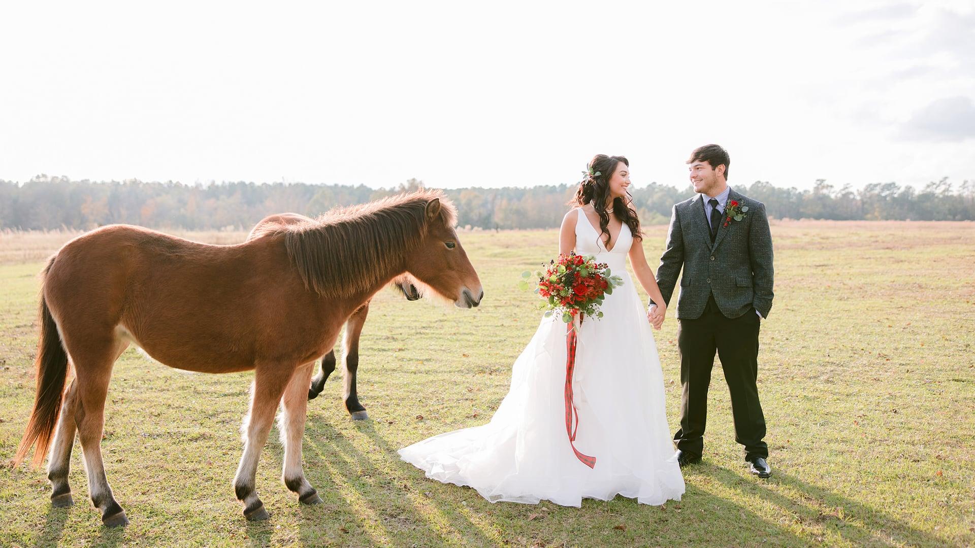 Christmas Wedding Inspiration   Wildhorse at Parker Farms