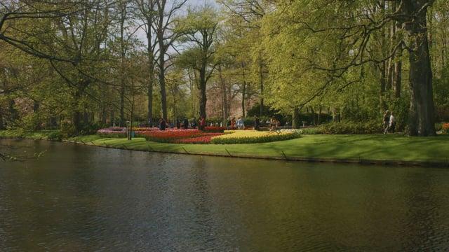 Keukenhof, Holland, the Netherlands, Europe - Short Preview in 4K HDR
