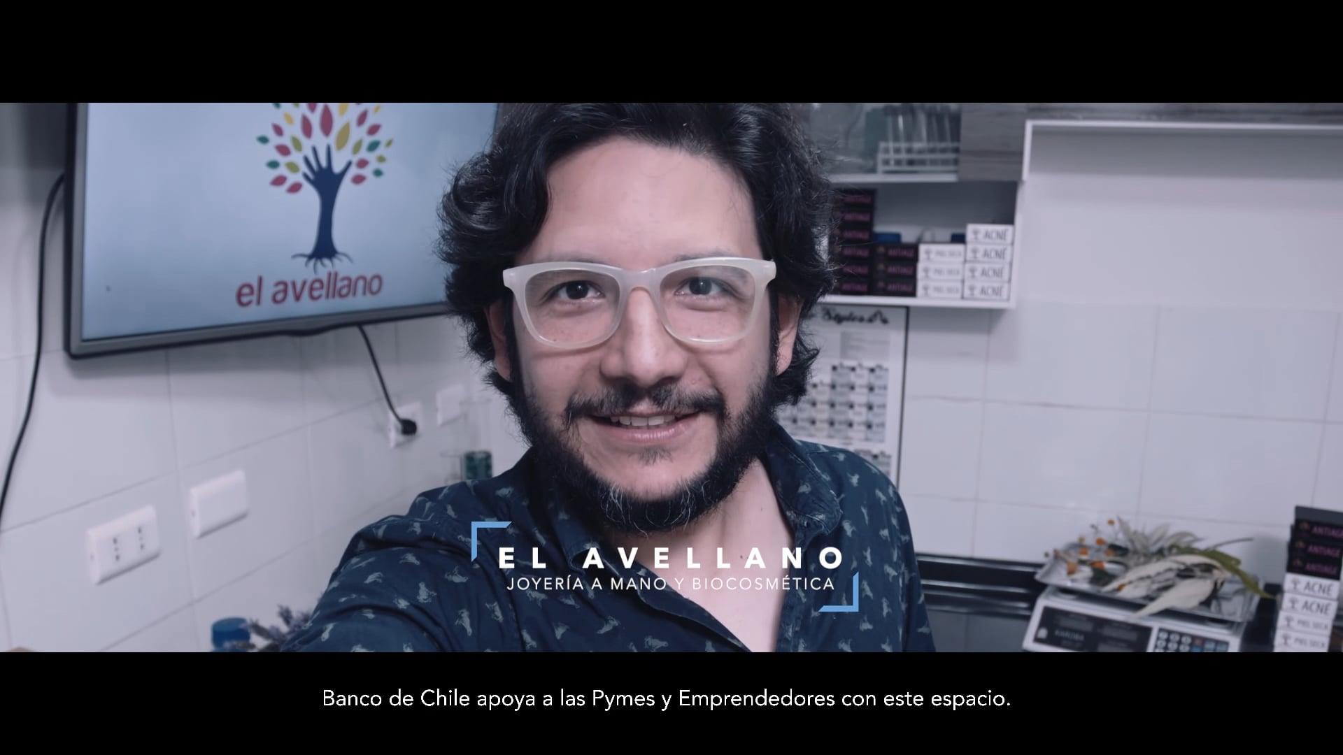BANCO DE CHILE PYMES AVELLANO MEGA