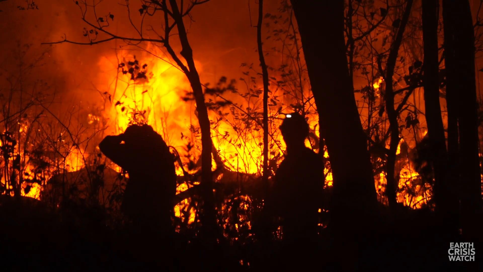 Bolivia's Fires were No Accident