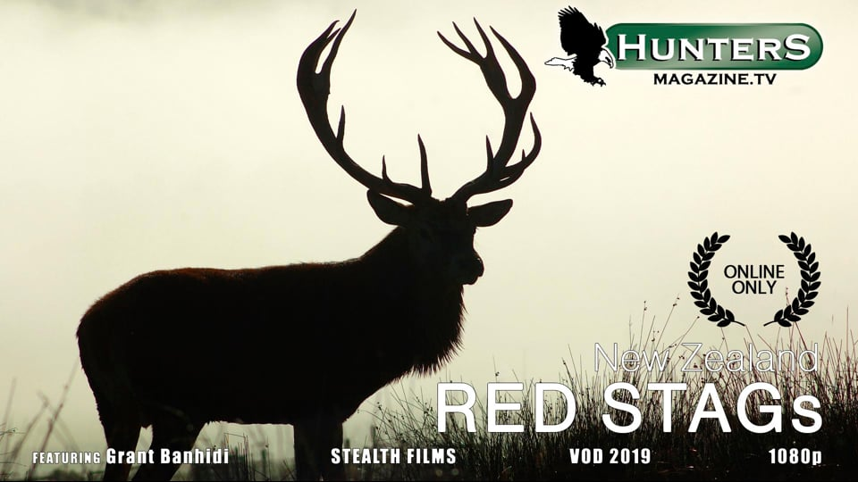 Red Stags - New Zealand