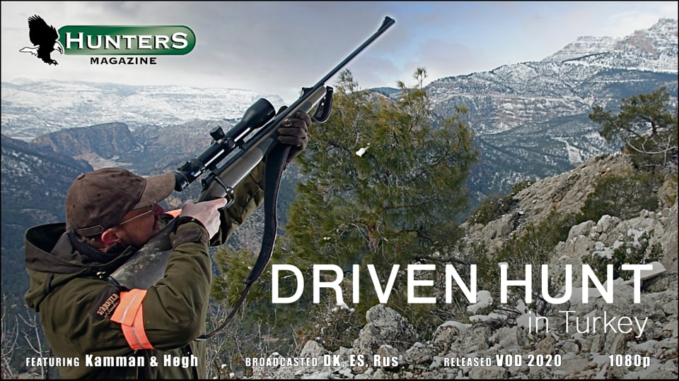 Turkish driven hunt and roe buck hunt in Scotland