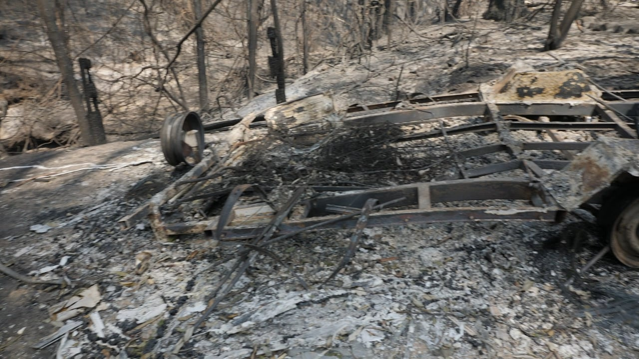 Australia Bushfires: Acts of heroism, stupidy & regret