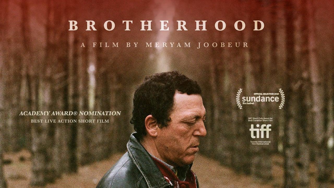 Brotherhood   Short Film of the Day
