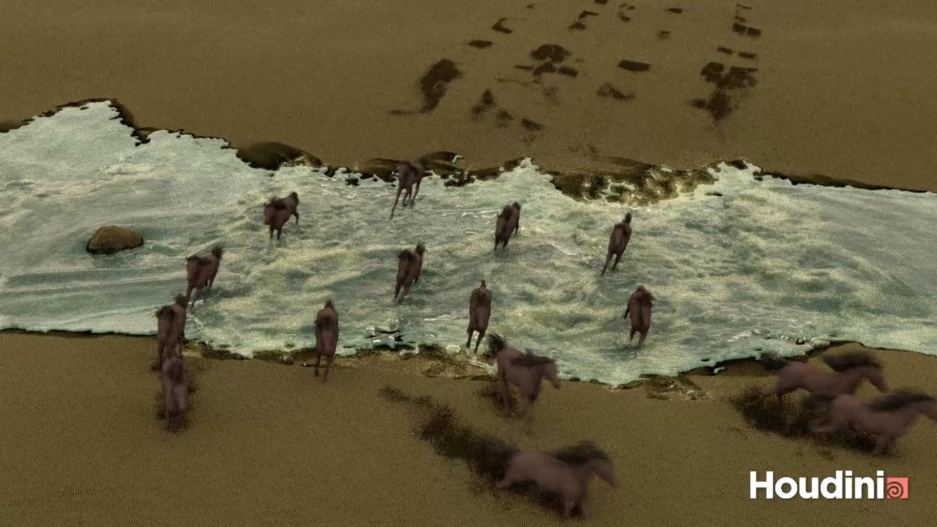 Running Hores