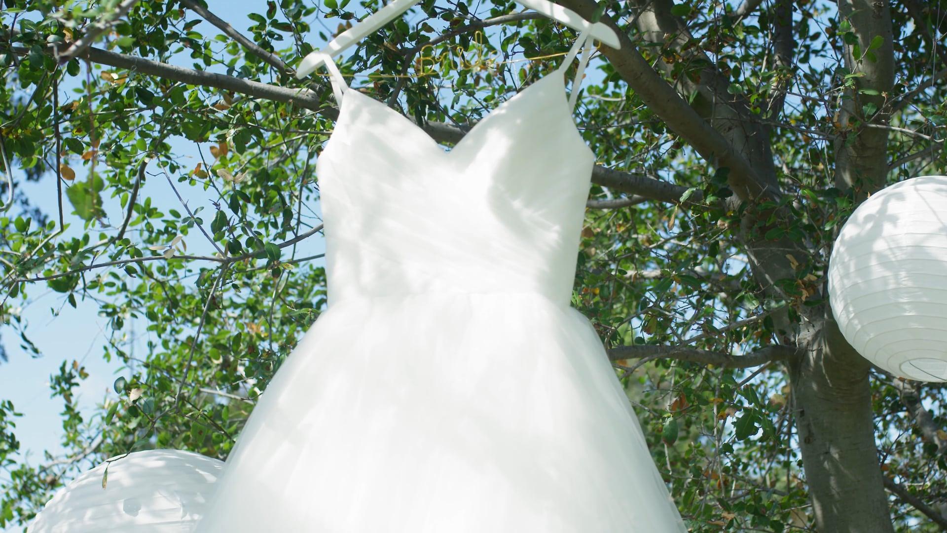 Bliss Wedding Highlight