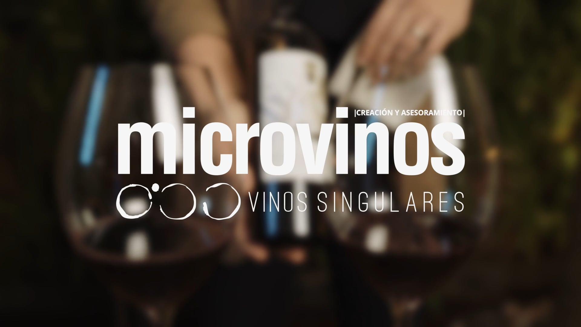 MICROVINOS - SPOT CONCEPTO