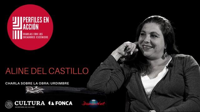 Perfiles en Acción: charla con Aline Del Castillo Pérez