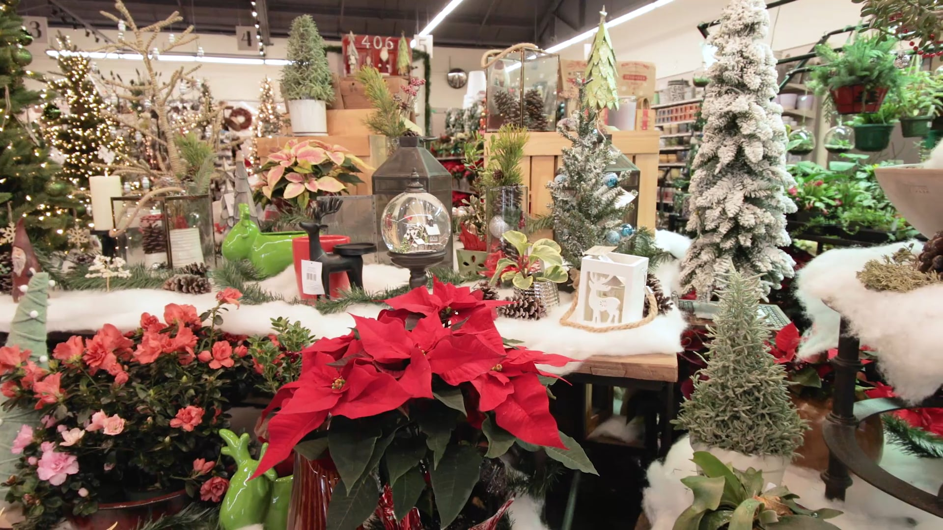 Montana Ace Hardware | The Christmas Place