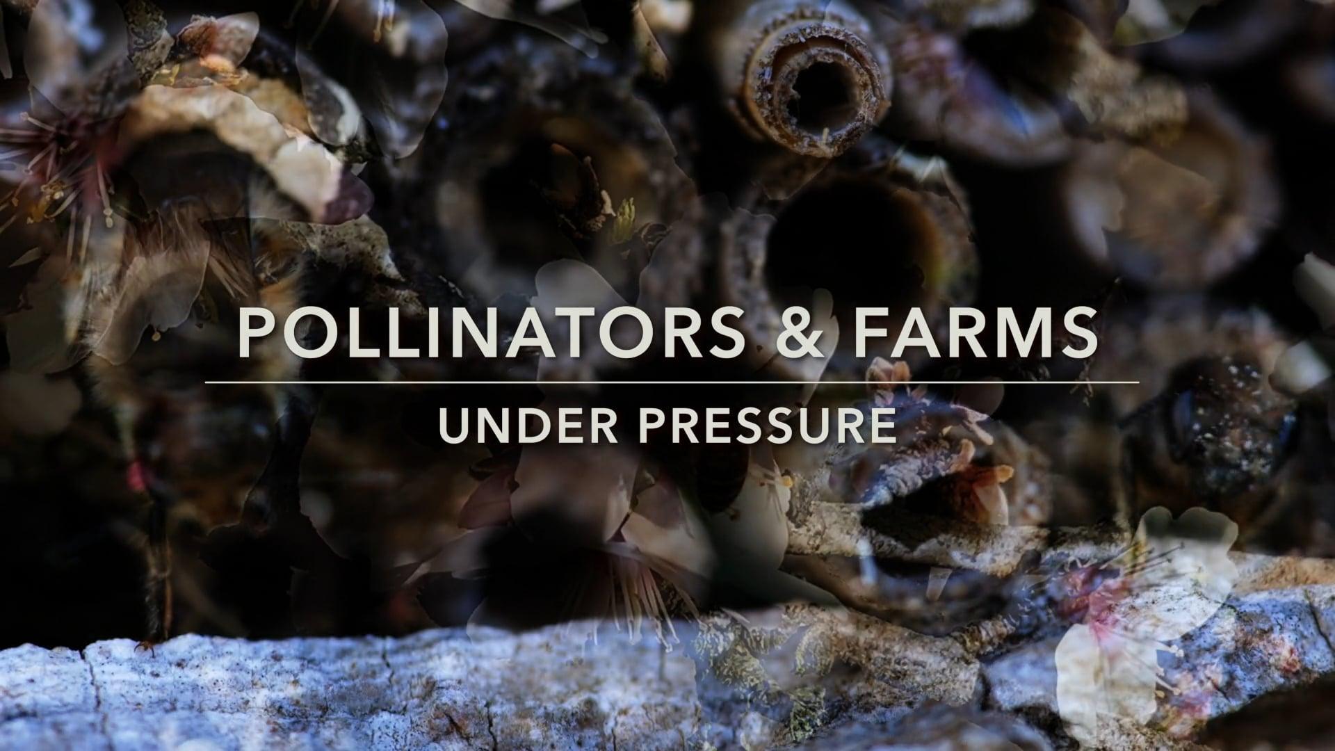 Farms Under Pressure