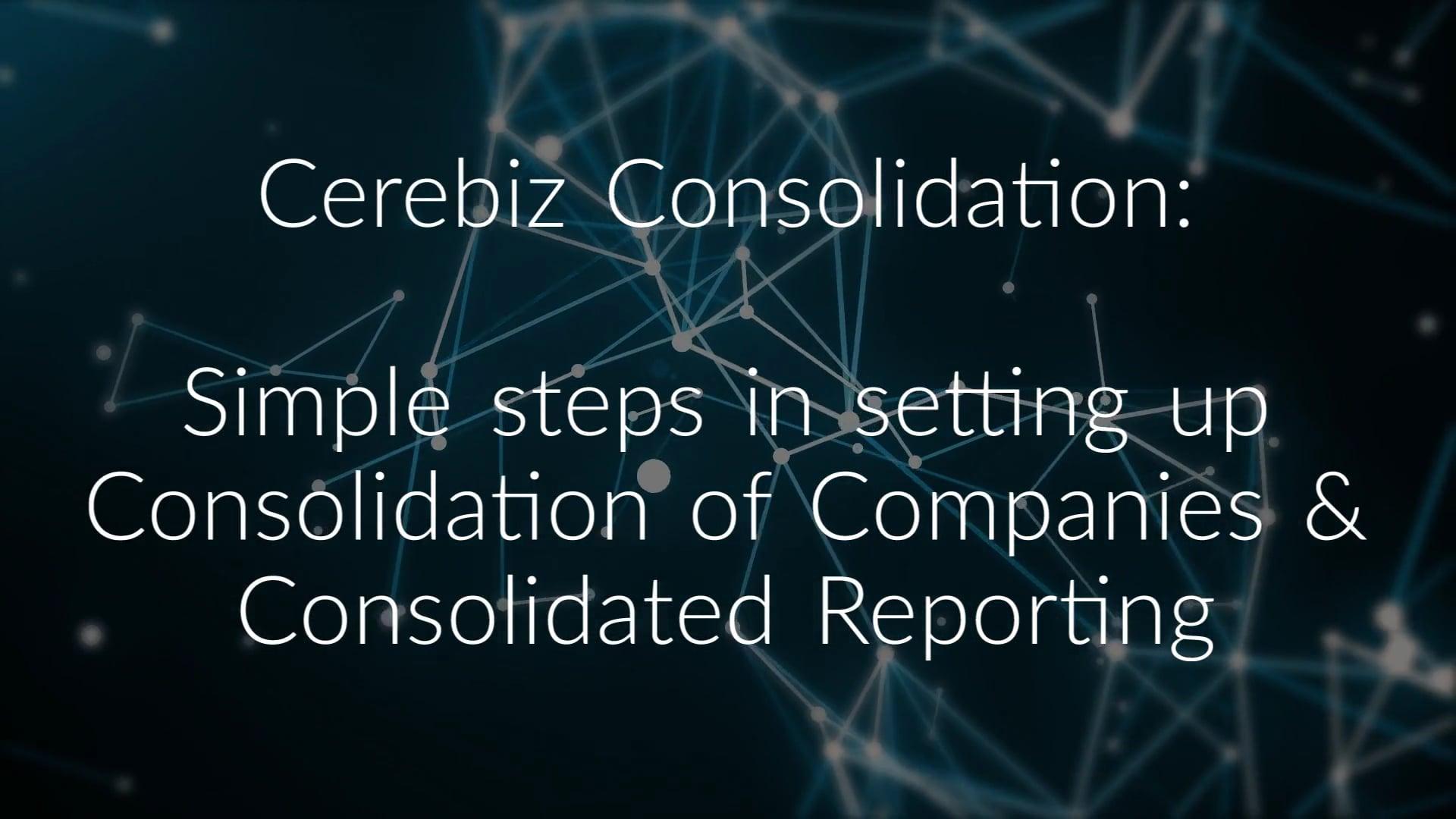 Cerebiz Consolidation
