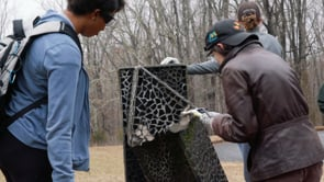 Finding a Time Capsule in a Sculpture