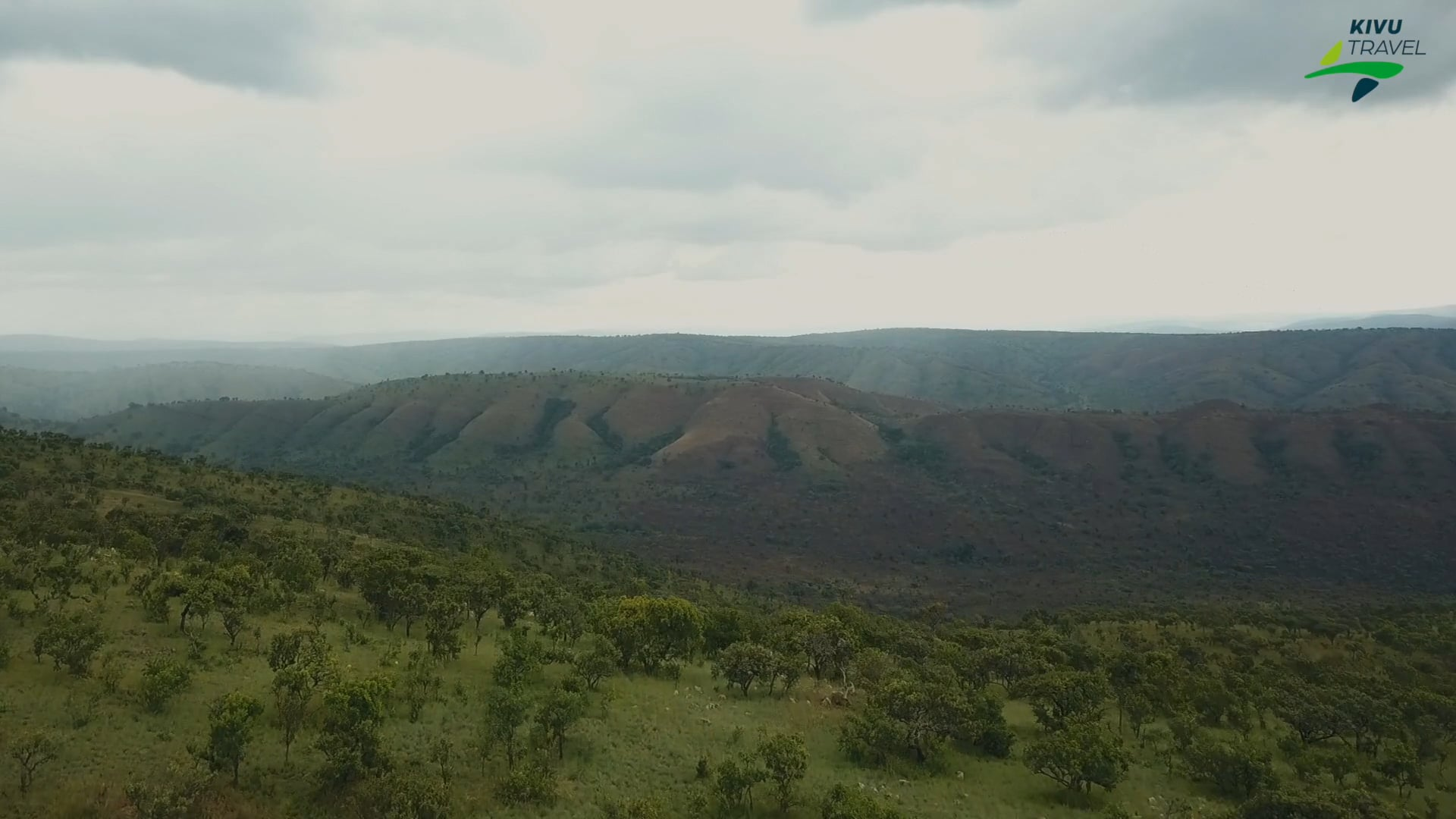 Akagera National Park I Kivu Travel