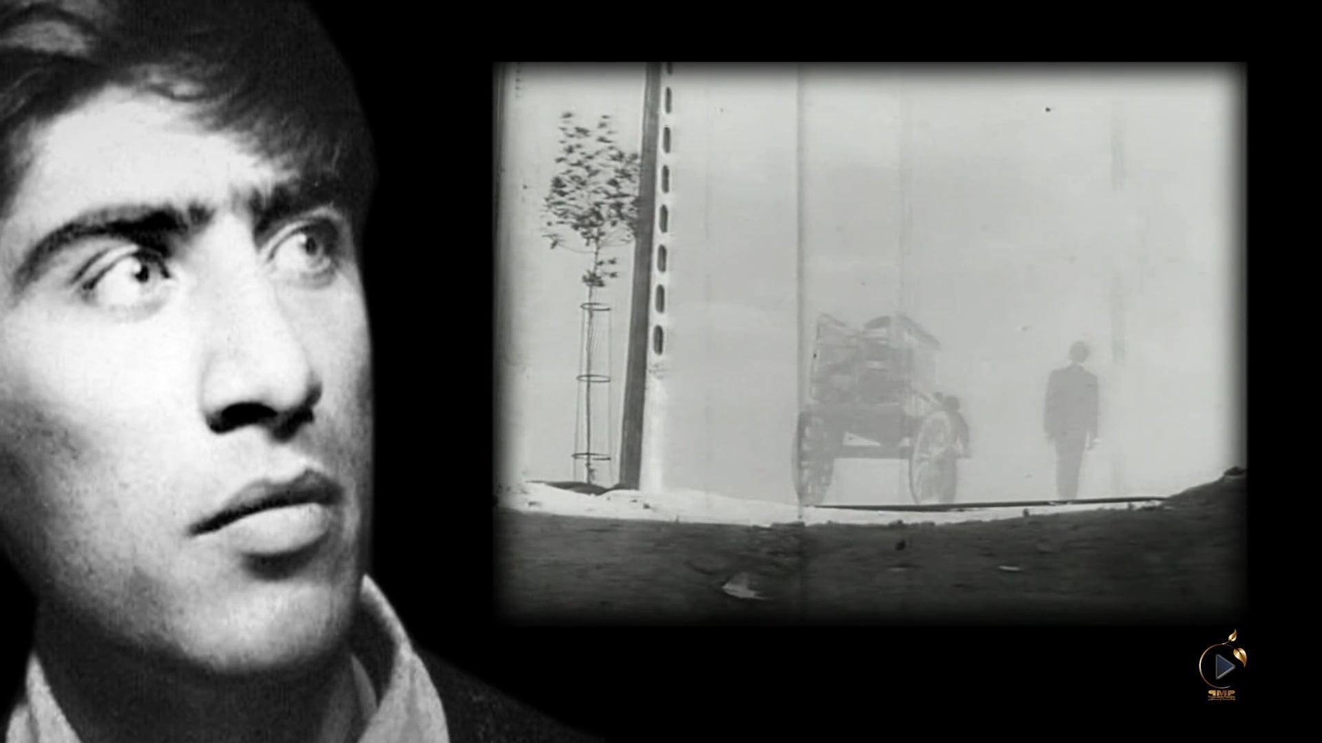 بهرام بیضائی، استعارهگر سینمای ایران
