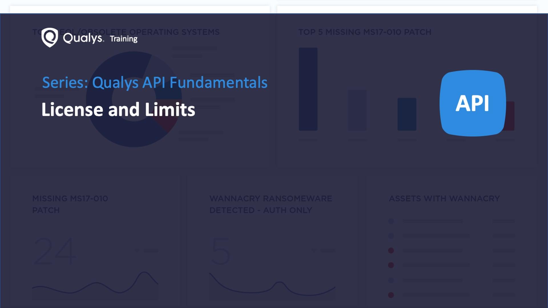 Qualys API - License and Limits