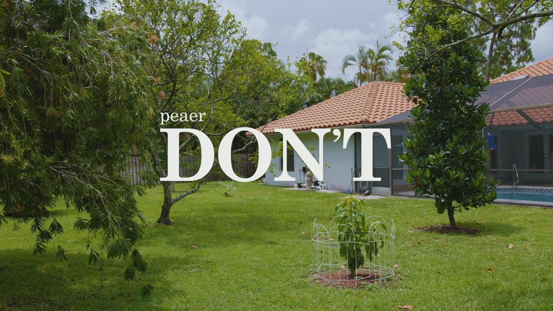 peaer - Don't