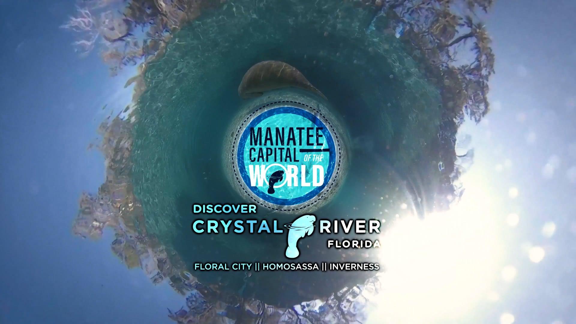 Discover Crystal River/Homosassa Florida (1 minute)
