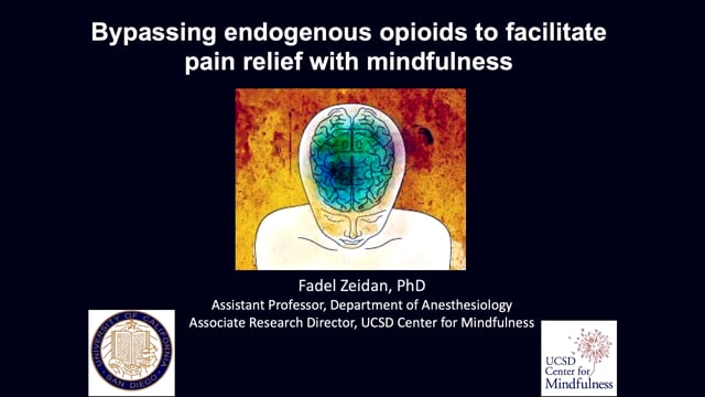 9-Bypassing endogenous eopioids to facilitate pain relief with mindfulness-Zeidan
