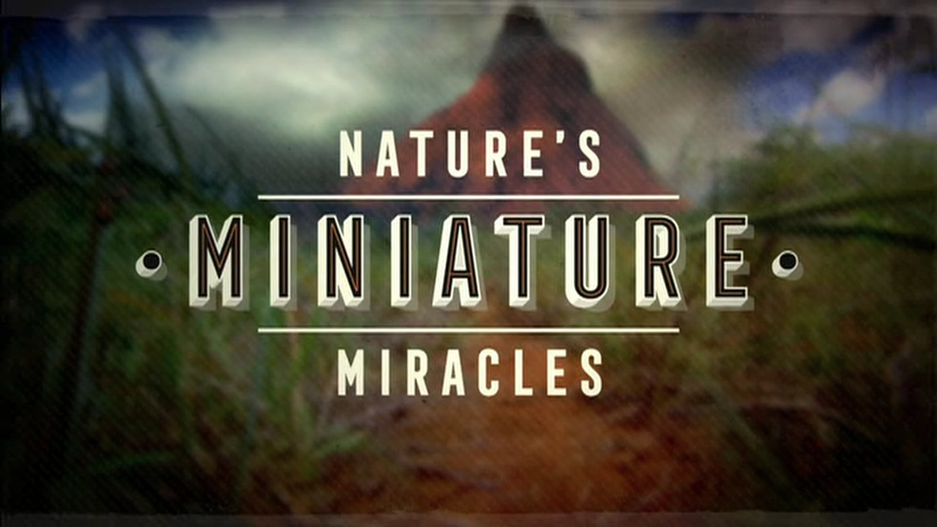 Natural World: Nature's Miniature Miracles. Pre and Post Title