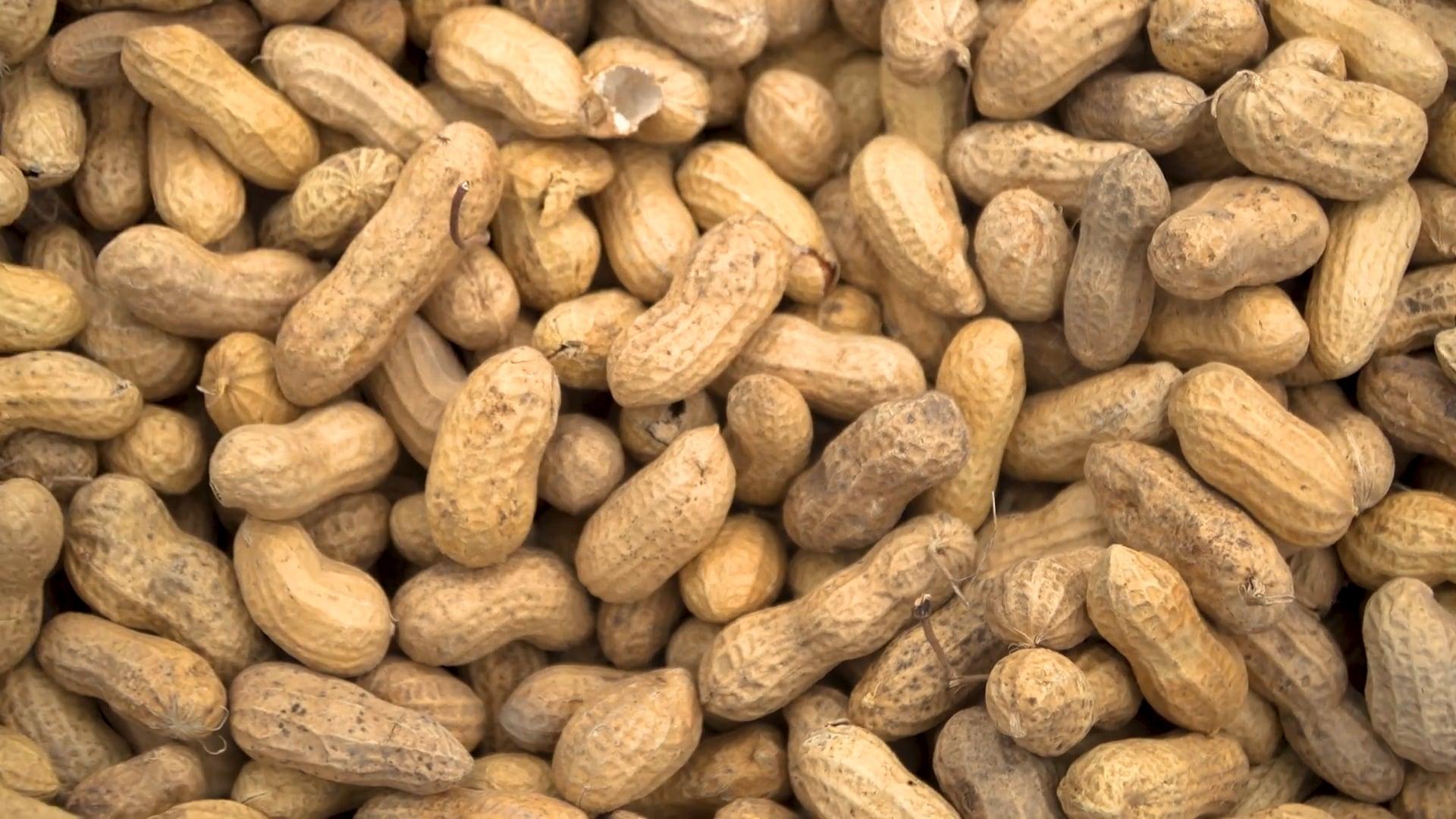North Carolina Peanuts