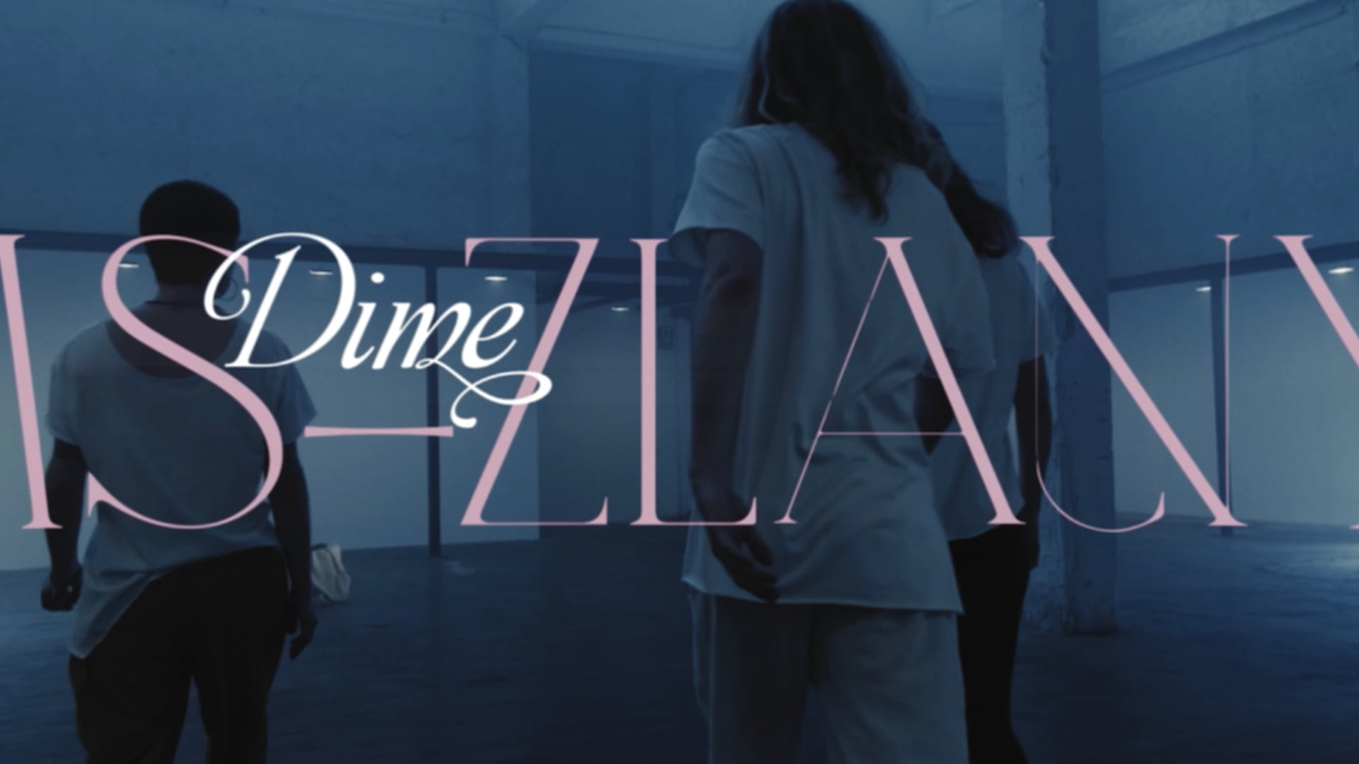 MS ZLANY - Dime