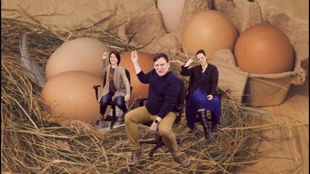 DRAMA: Egg cellent Egg cersize