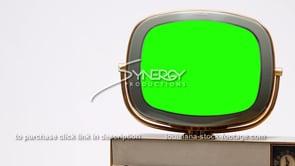 1699 Philco Siesta cu right justified green screen