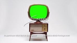 1723 vintage Philco Predicta Penthouse WS green screen