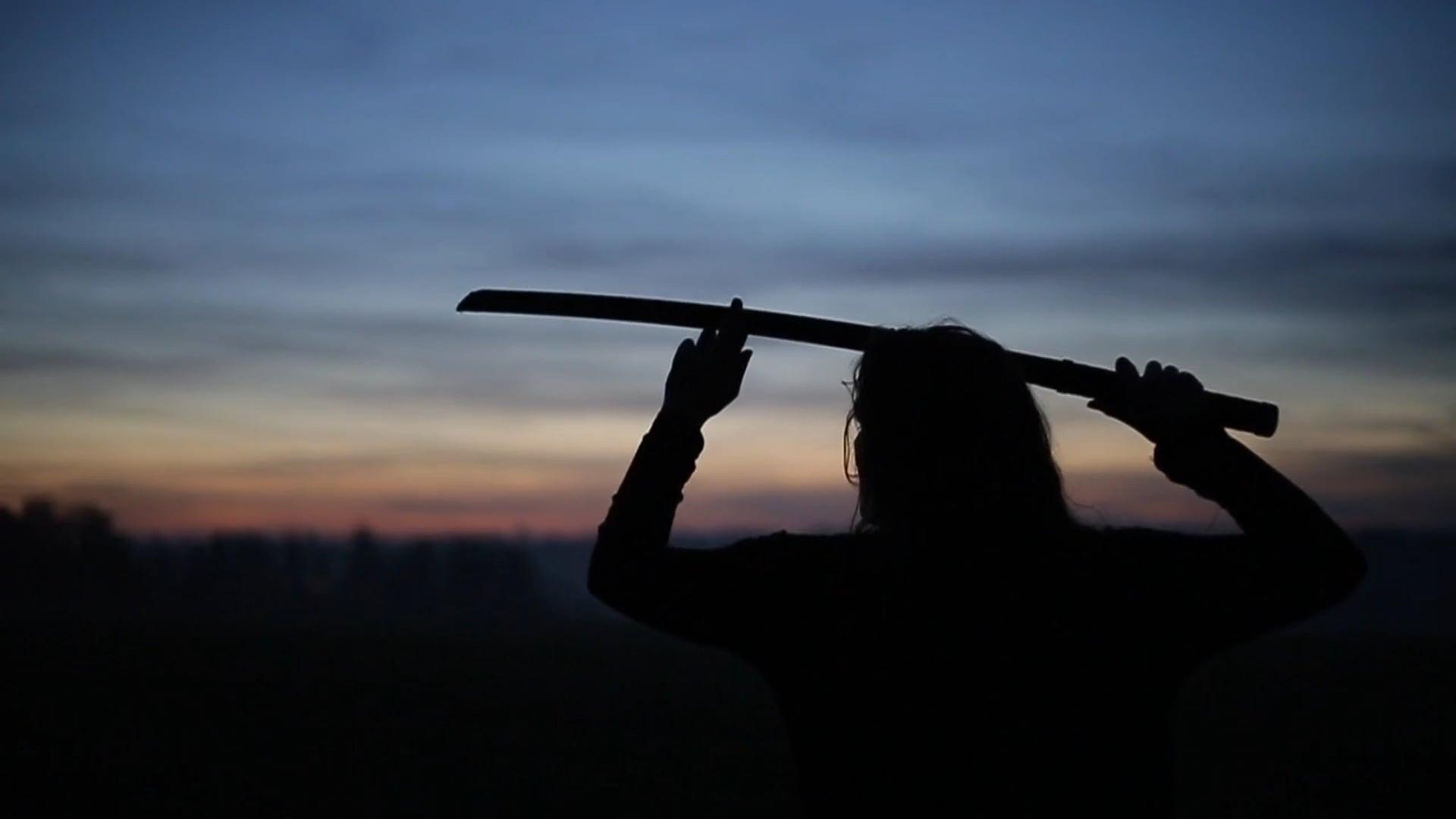 She Samurai a Martial Arts Film