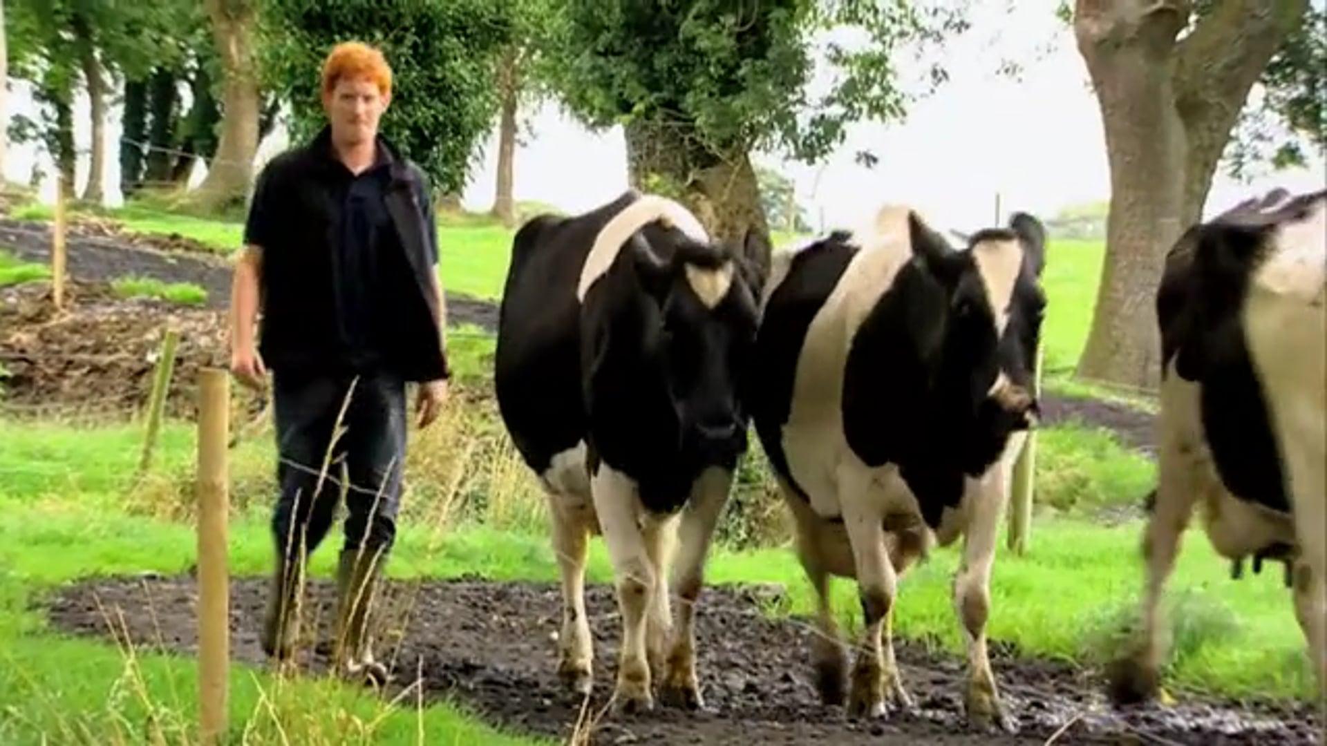 Feirm Factor Series 1 The Farmers