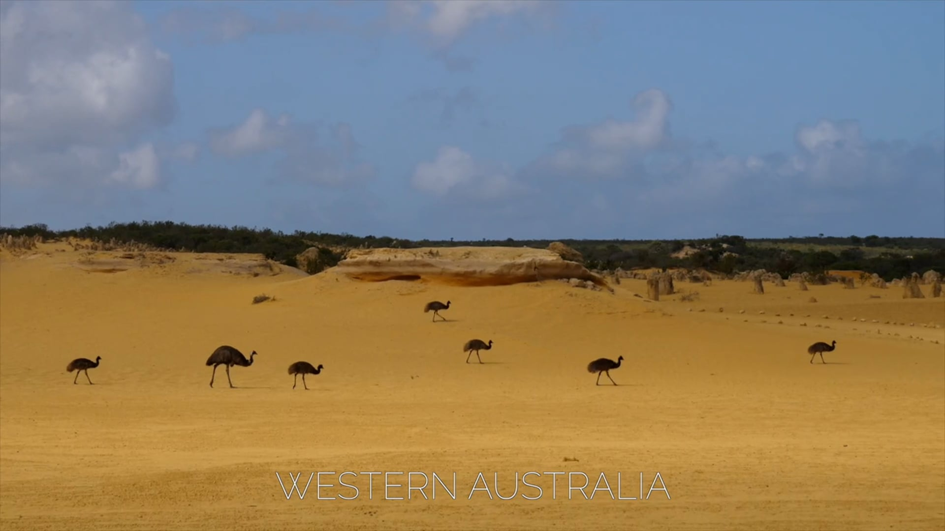 Western Australia 2020 - Federico Infantino