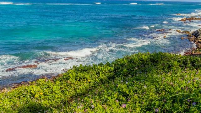 Relaxing Tropical Island Views